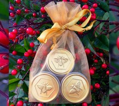 Lip Butter TIN Gift Set of 3